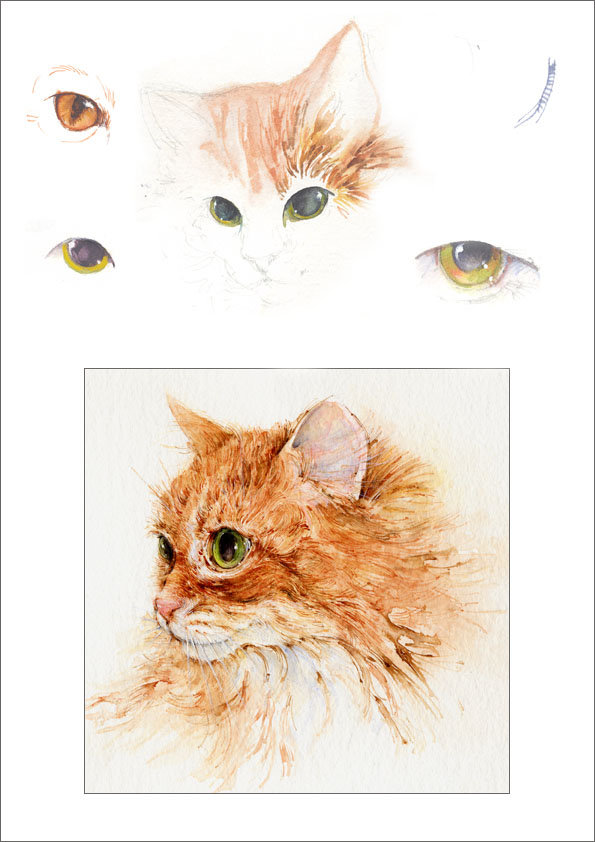 "Cats' eyes practice, and ""Annie"", Kate's cat."